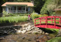 listen to the rushing creek from this charming cottage