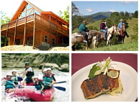 Save with our cabin specials, online ticket discounts, activity specials and dining discounts