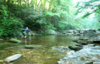 Great fly fishing in the North Carolina mountains